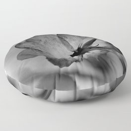 Delicate transparency Floor Pillow