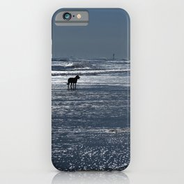 Dog on the Beach iPhone Case