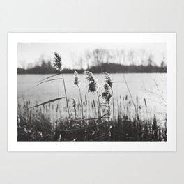 December at the Lake Art Print