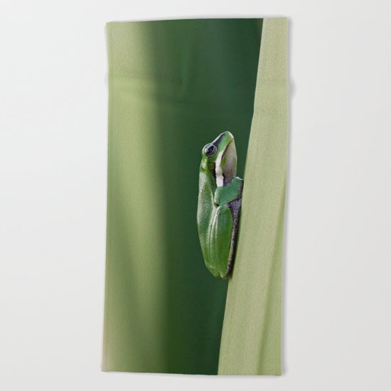 Dwarf Green Tree Frog Beach Towel