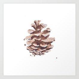 Pine Cone Study Art Print