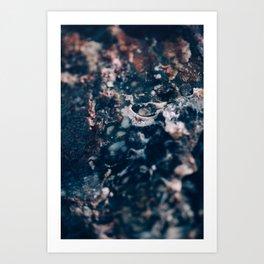 petrified Art Print