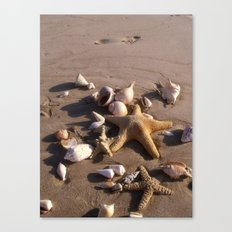 Romantic Beach Canvas Print