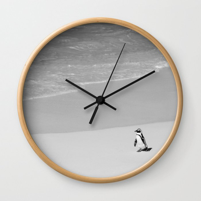 Lone African Penguin walking on beach Wall Clock