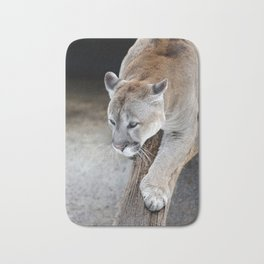 Cougar on a tree branch Bath Mat