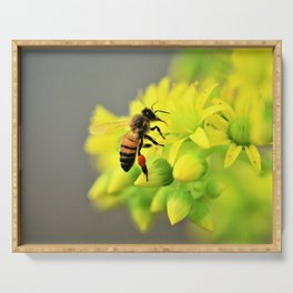 Busy Bee by Reay of Light Serving Tray