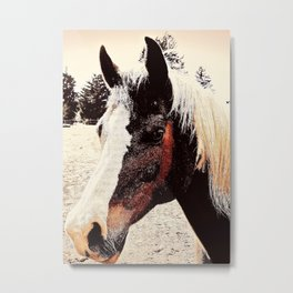 Portrait Of A Gentle Friend Metal Print