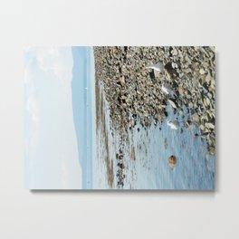 Seagull Landscape Metal Print