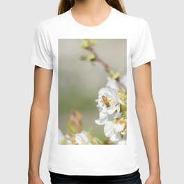 Bee laid on white flowers of a cherry tree T-shirt
