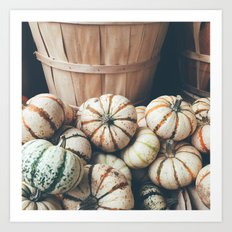 Autumn Pumpkins Art Print