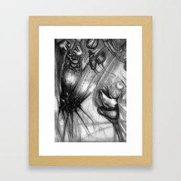 DN001 - Detail 1 Framed Art Print