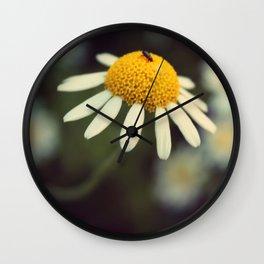 Daisy macro Wall Clock
