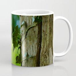 English Ivy on a Post Coffee Mug
