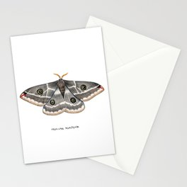 Mexican Agapema  (Agapema anona) Stationery Cards