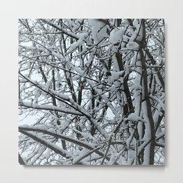 Snowy Tree Metal Print