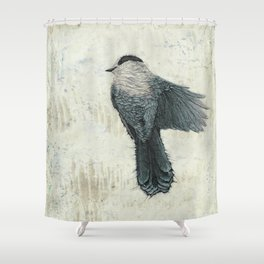 Canada Gray 2 Shower Curtain