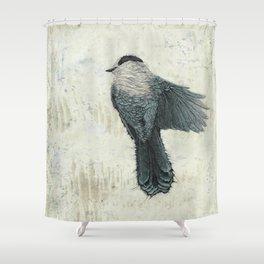 Canada Gray 2 Shower Curtain