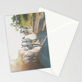 Camargue Horses XIII Stationery Cards
