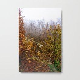 End of November  Metal Print