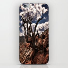 Cassidy Arch Trail iPhone Skin