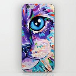 Ragdoll Cat - Cats in Colour 1 iPhone Skin