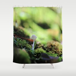 Bonsai Fungi Shower Curtain