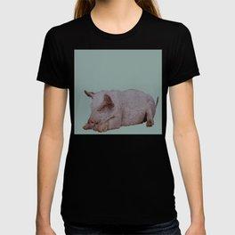 Sleeping pig T-shirt