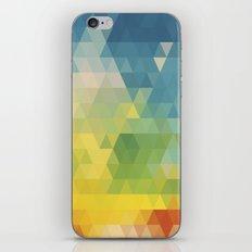 Meduzzle: Colorful Days iPhone & iPod Skin