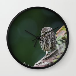 Little Owl Wall Clock