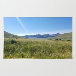 Cabin Creek Meadow Rug