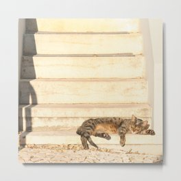 The sun shines on all cats equally Metal Print