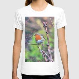 Garden Robin T-shirt