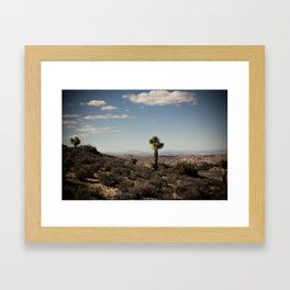 One Joshua Tree Framed Art Print