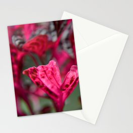 Rich Magenta Stationery Cards