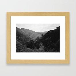 Big Sur, CA Framed Art Print