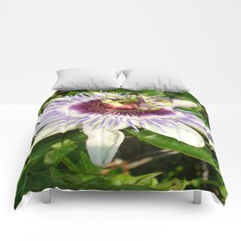 Passiflora Close Up With Garden Background  Comforters