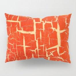 Chinese Paint Pillow Sham