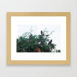 Fir Flock Framed Art Print