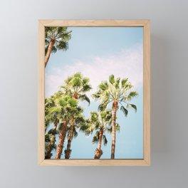Green palm trees on blue   Marrakech travel photography   Colorful film photo art Framed Mini Art Print