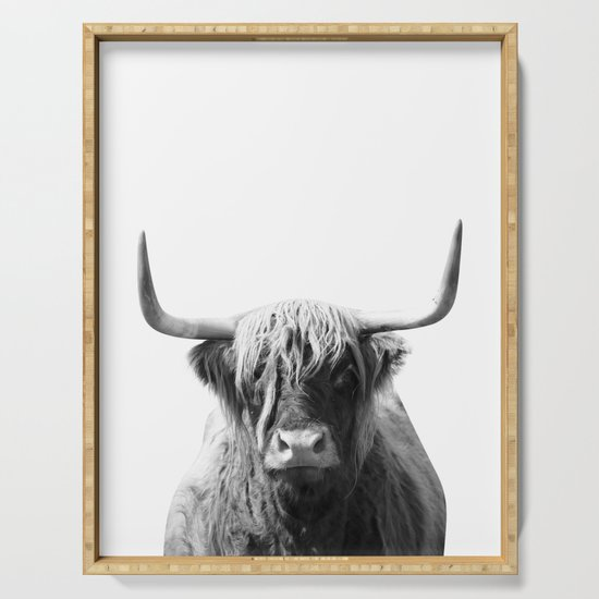 Highland cow | Black and White Photo by jackyd