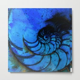 Nautilus Shell No. 987 by Kathy Morton Stanion Metal Print