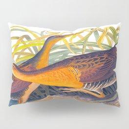 Great Red Breasted Rail John James Audubon Scientific Birds Of America Illustration Pillow Sham
