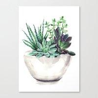 succulents Canvas Prints featuring Succulents by Bridget Davidson
