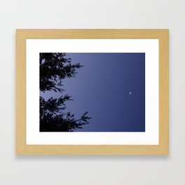 lights in the night sky Framed Art Print