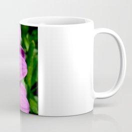 Purple Osteospermum Coffee Mug