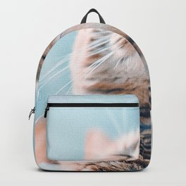 Cats Ginger Color Snout Backpack