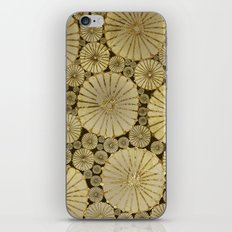 Abstract Floral Circles 6 iPhone & iPod Skin