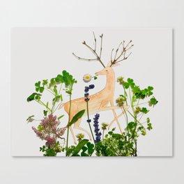 Deer Me! Canvas Print