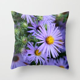 Hardy Blue Aster Flowers Throw Pillow