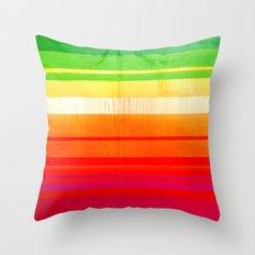 Mexican Trip Throw Pillow